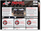 This Travel Youth Baseball site was redesigned with all new technologies, such as Twitter Feeds and Weather Forcasts.